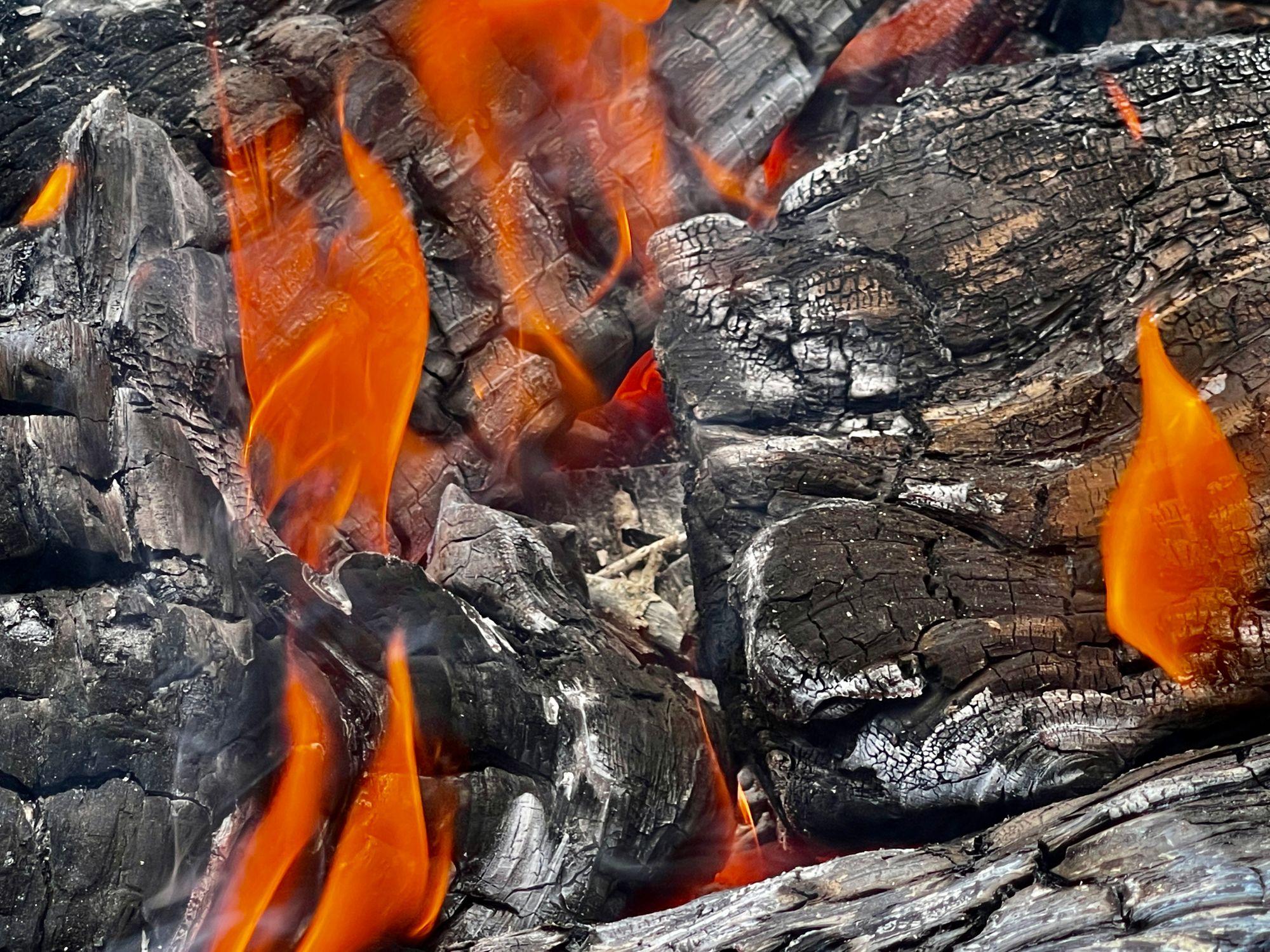 Charred logs burning